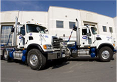 Reliable Waste Management trucks, lined up and ready for service